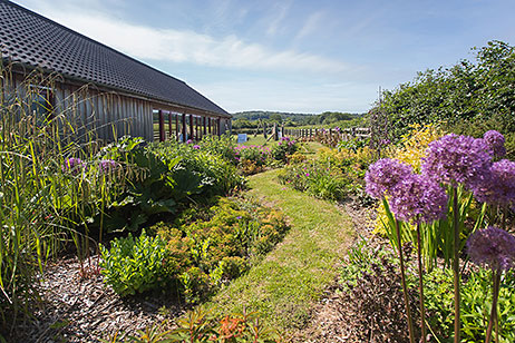 Walk through borders beside the swimming pool, Home Farm Holiday Cottages, Weybourne